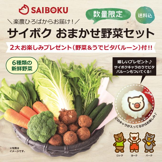 サイボク おまかせ野菜セット