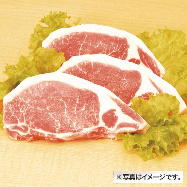 GP豚ロース肉切身